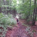 Wycieczka w czasie intergarcji firmowej rowerami w lesie