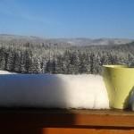Kubek na balkonie z widokiem na las