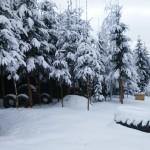 zima w Istebnej