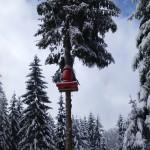 zjazd tyrolski w parku linowym w Istebnej