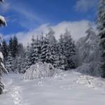 zimowy krajobraz w górach w Istebnej