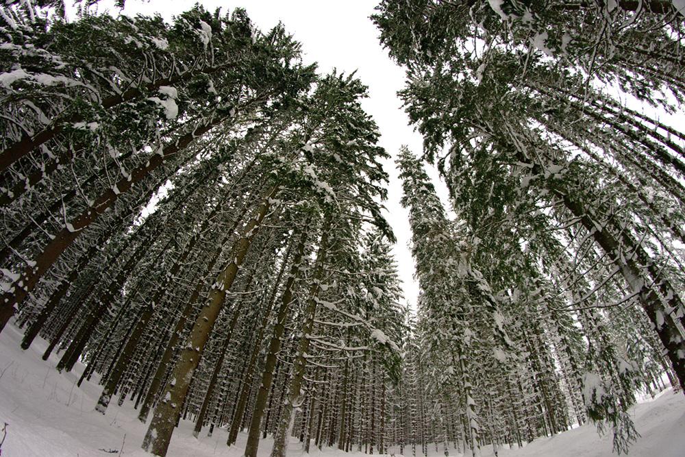 zimowy marsz w ośnieżonych górach