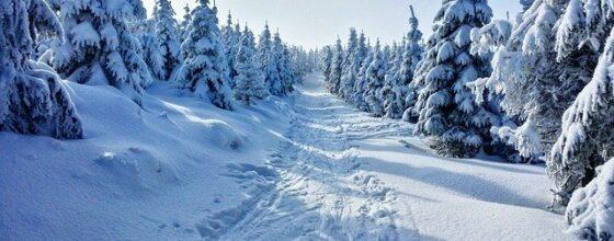 Gdzie na narty do Istebnej? Polecane stoki, wyciągi w Istebnej